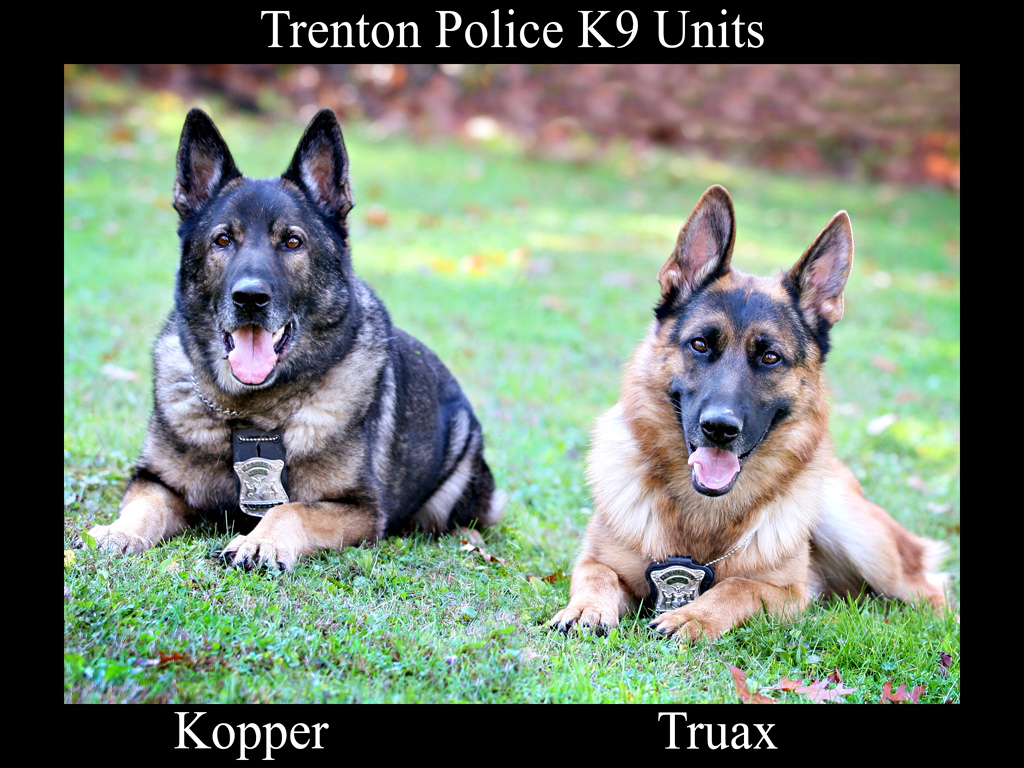 Trenton Police K9 Units - Kopper and Truax