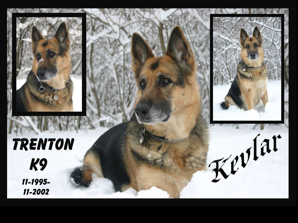 Trenton K9 - Kevlar - November 1995 to November 2002